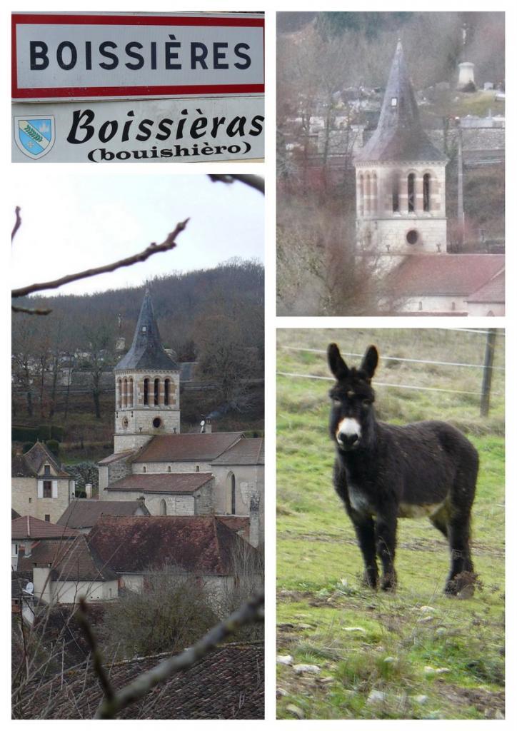 Rando Boissières 15 janv 2017